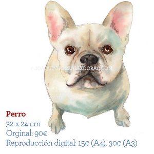 ilustrador acuarela perro